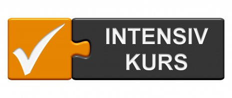 Puzzle Button: Intensivkurs